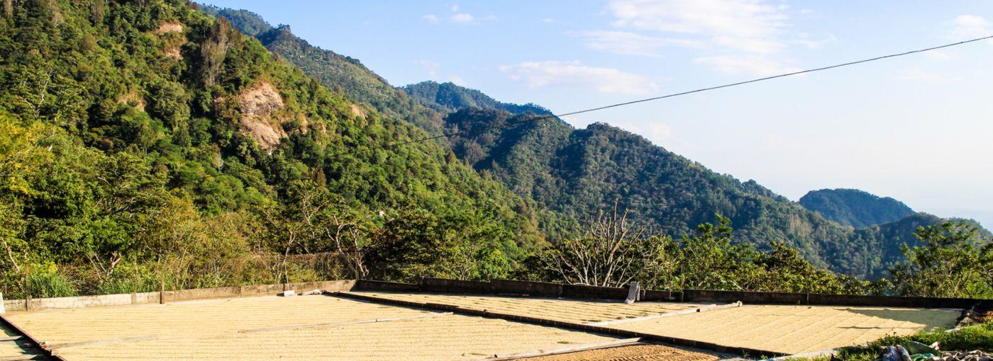 El Salvador Káva ze země Spasitele